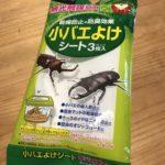 カブトムシのコバエ駆除はセリアの小バエよけシート3枚入がおすすめ
